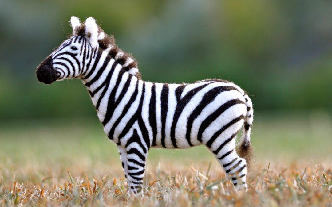 Needle Felting a Zebra
