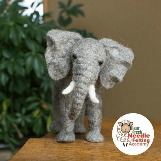 elephant course