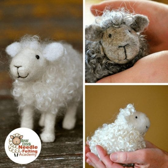 Sheep Course Kit