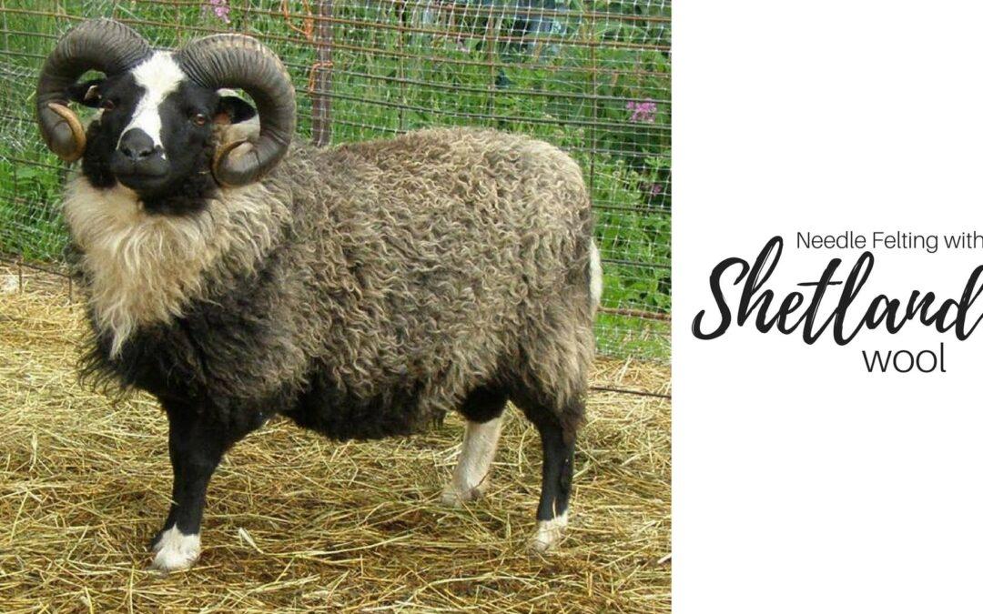 Needle Felting with Shetland Wool