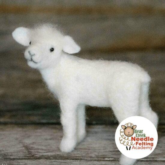 lamb course