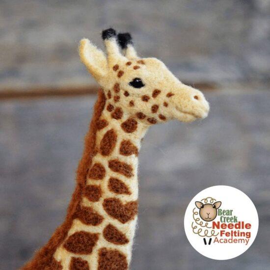 Giraffe Course Kit