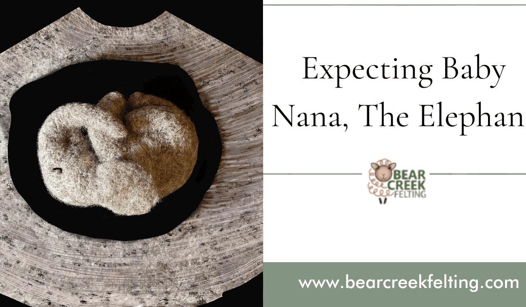 Expecting Baby Nana, The Elephant