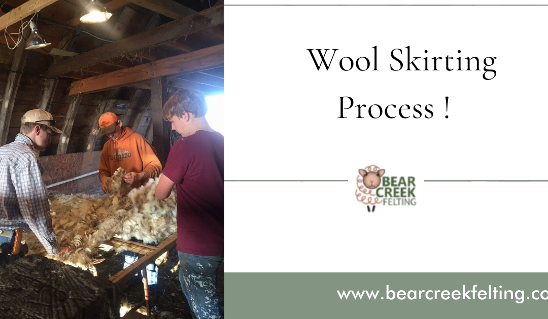 Wool Skirting: How To Prepare Wool After Shearing