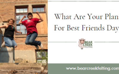 What Are Your Plans For Best Friends Day?