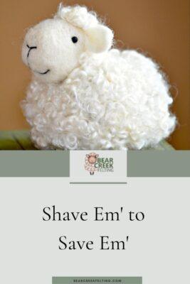 Shave Em' to Save Em'